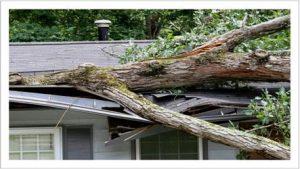 Storm Damage Insurance Restoration