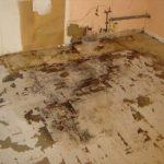 Madison Heights Water Damaged Kitchen