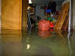 Ann Arbor Water Damage